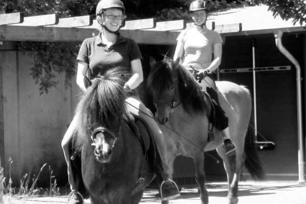 Assoziative Reise mit Pferden